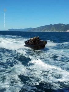 Il gommone con una squadra di incursori della Marina del GOI durante l'abbordaggio alla nave