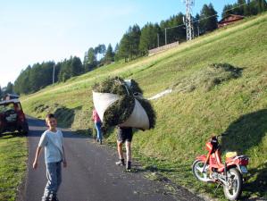 approviggionamento del fieno sulle praterie del Monte Elmo a Sesto