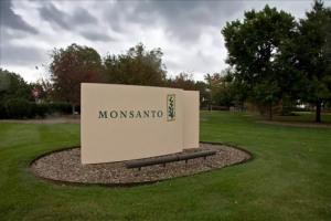 monsanto_company