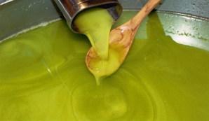 Spremitura dell'olio extra vergine d'oliva