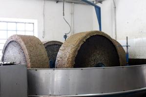 Le olive sono frante con molazze di granito, la cui lenta rotazione rende omogenea la pasta, che passa poi in un impianto a ciclo continuo
