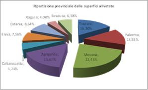 Lo schema della ripartizione del comparto di olicoltura in Sicilia