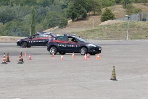 Le Forze di Sicurezza, come polizia e carabinieri, sono sottoposte a dei corsi di guida sicura in apposite strutture in circuito chiuso. Sarebbe opportuno estendere questi corsi di perfezionamento alla guida anche ai neio-patentati, prima del conseguimento della patente di guida.